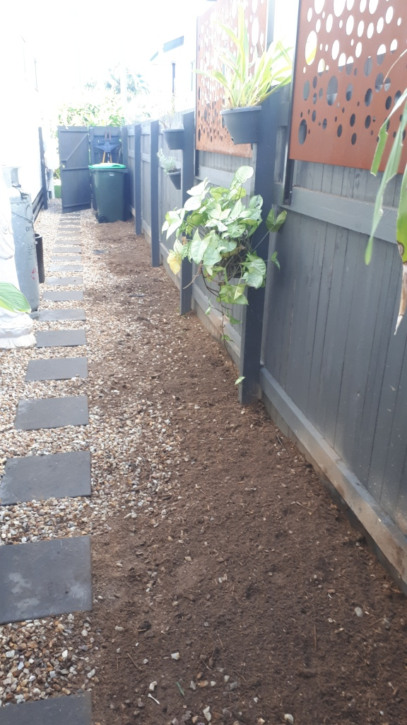 Bamboo removal Wynnum is completed